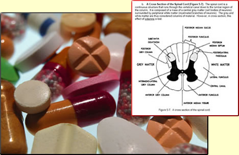 drug therapy pharmacology