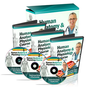 Complete Human Anatomy & Physiology Study Course
